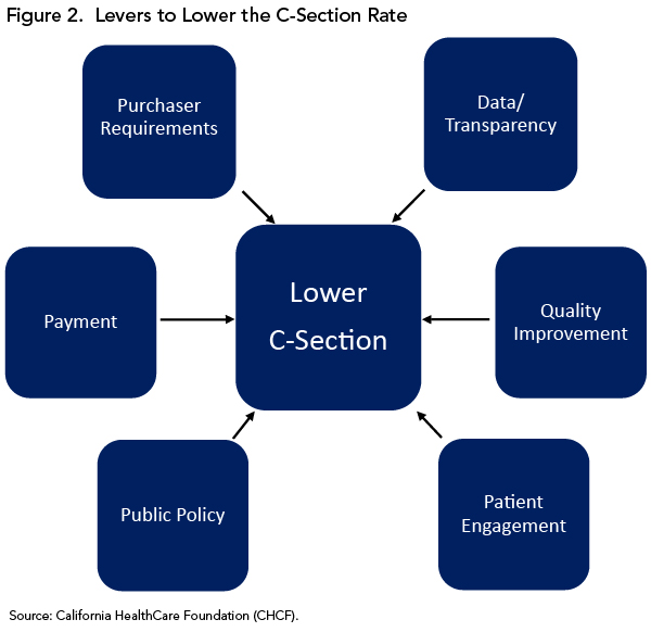 Figure 2. Levers to Lower the C-Section Rate