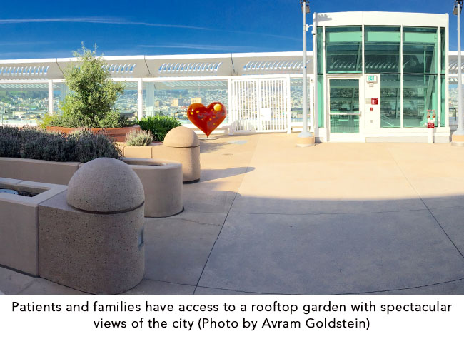 Patients and families have access to a rooftop garden with spectacular views of the city (Photo by Avram Goldstein)