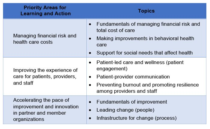 Table showing CIN priorities for learning and action and sub-topics.
