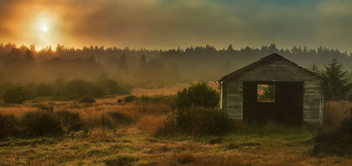 rustic shed in meadow