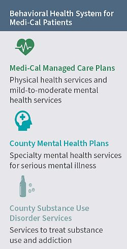 Describes the three behavioral health systems that serve Medi-Cal patients